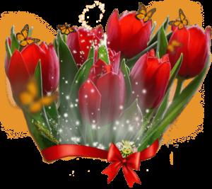 immagine auguri con tulipani